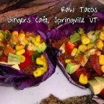 gingers-raw-tacos